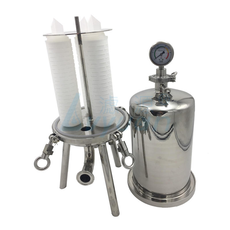 10 inch Sanitary stainless steel filter housing with pleated filter cartridge