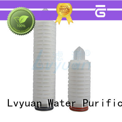 Lvyuan pes pp pleated filter cartridge with stainless steel for diagnostics